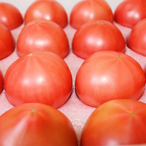 友幸素トマト 4㎏セット